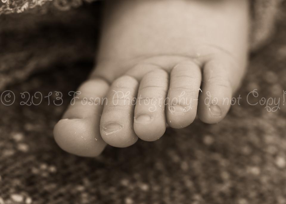 babyfotos-braunschweig-1