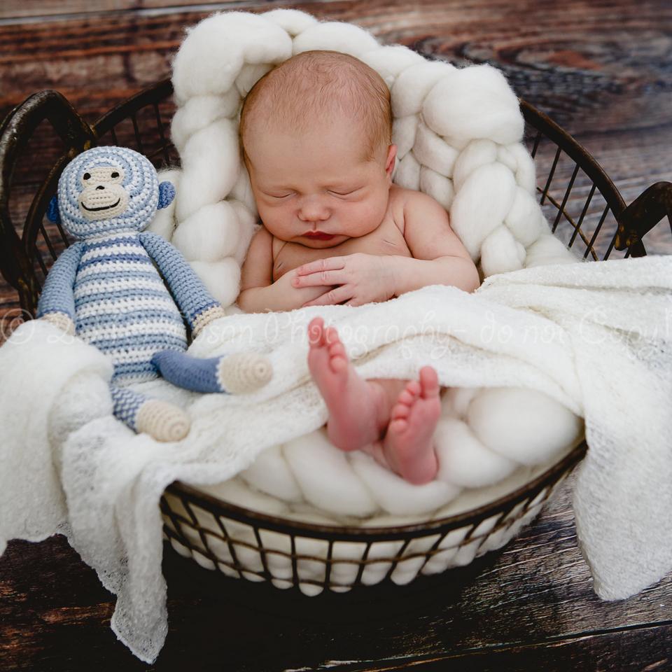 babyfotos-braunschweig-10