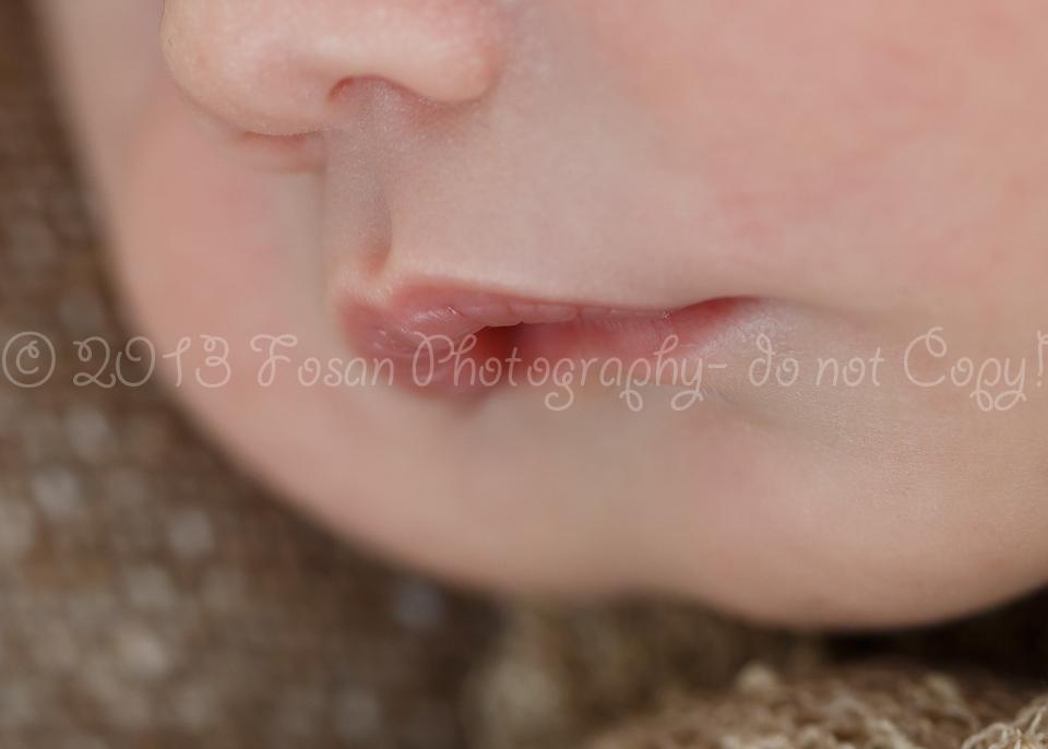 babyfotos-braunschweig-2