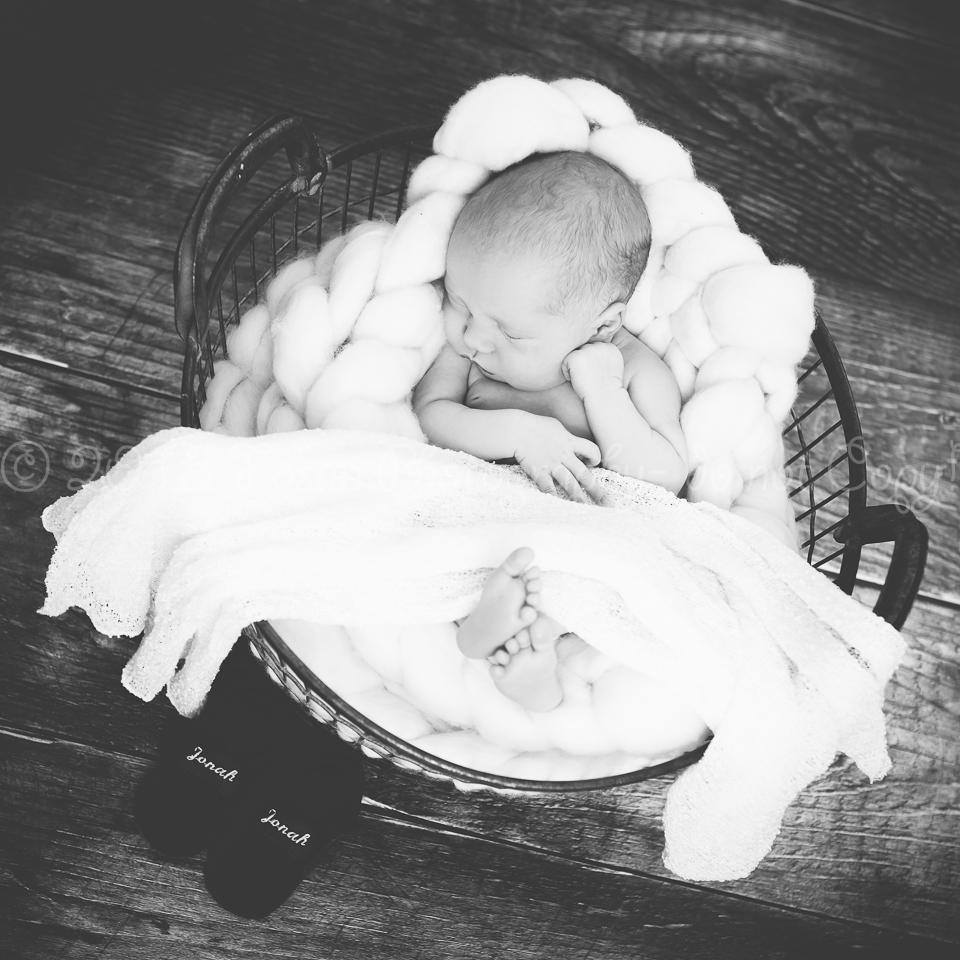 babyfotos-braunschweig-9