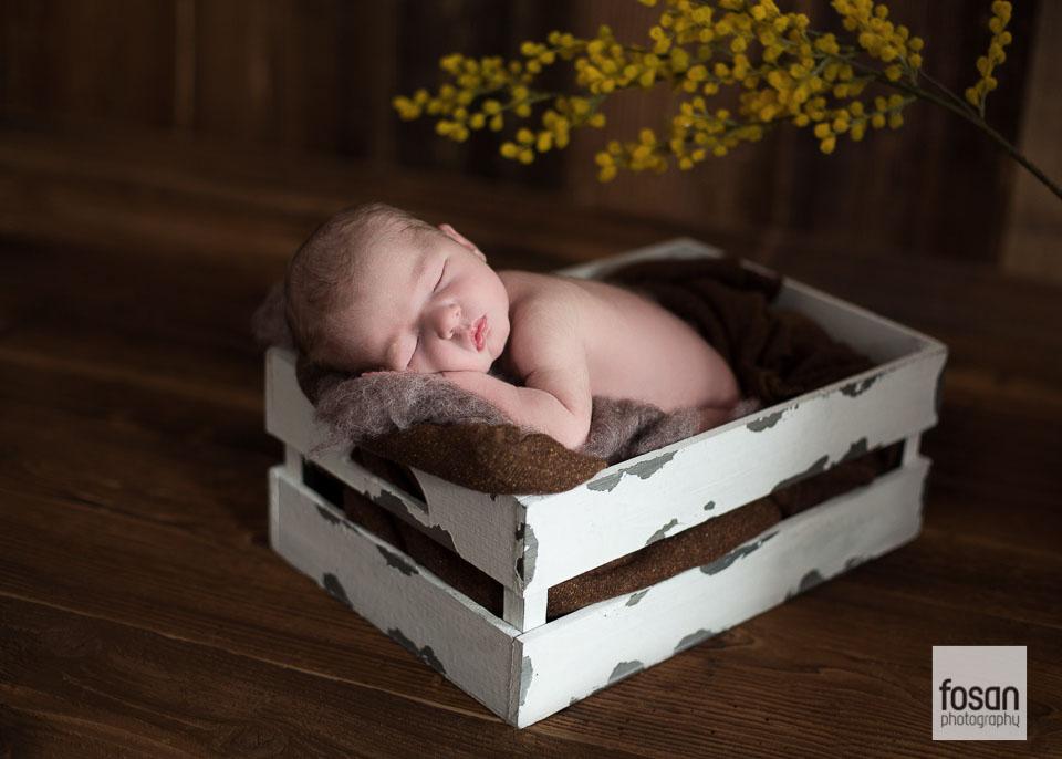Babyfotos-Wolfsburg-Lehre12