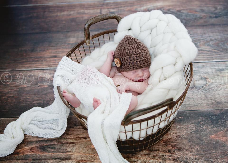 new-born-braunschweig-4