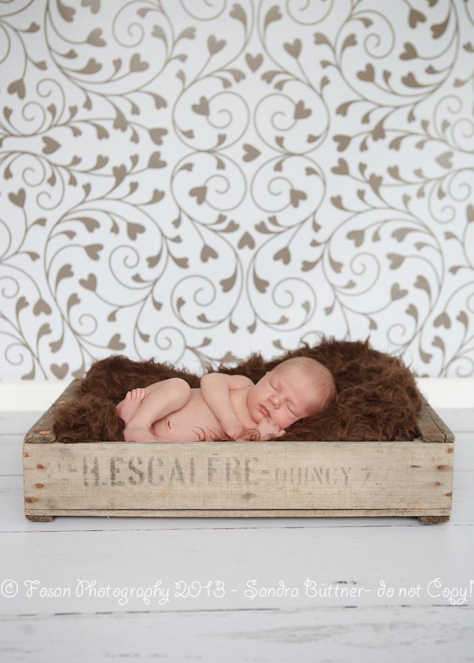 neugeborenenfotografie-10