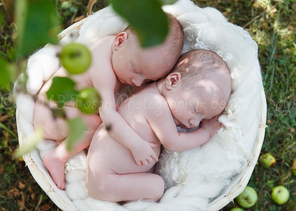neugeborene-zwillinge-13