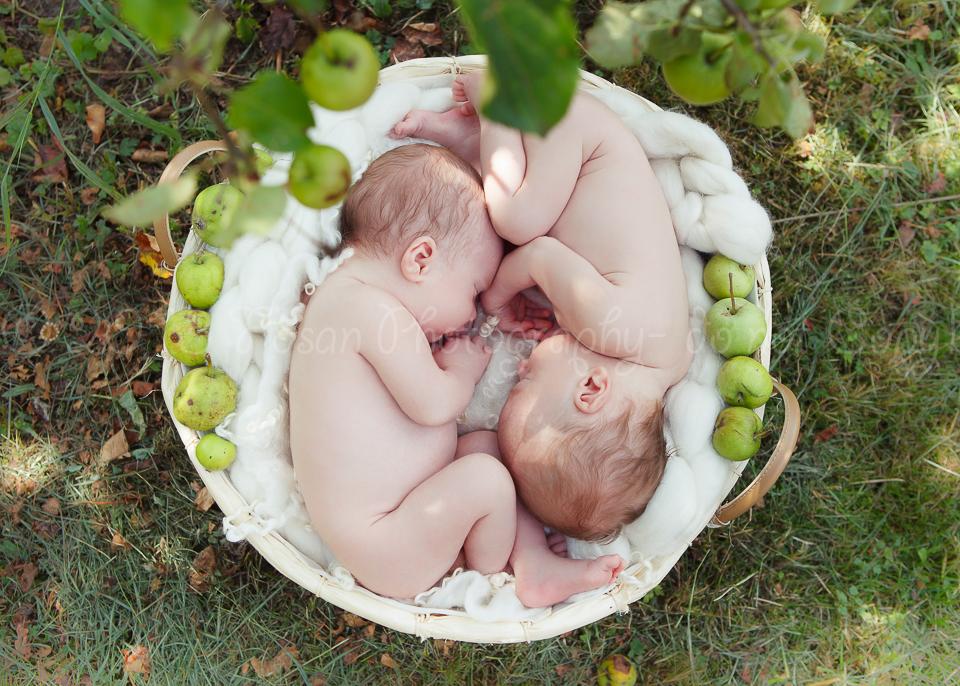 neugeborene-zwillinge-7