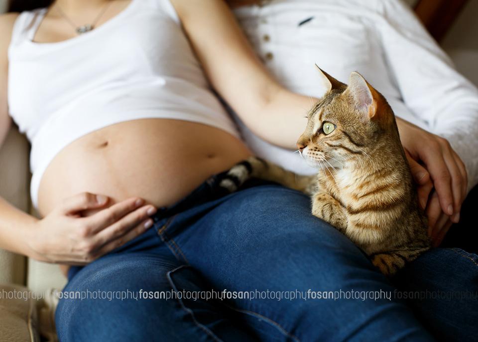 Babybauch fotos - Lehre - Flechtorf -4